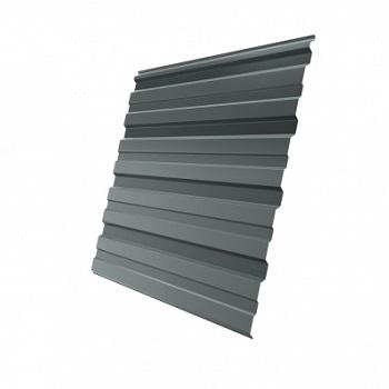 Профнастил С10 RAL 7005 (мышино-серый)