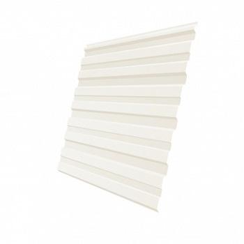Профнастил С10 RAL 9002 (бело-серый)