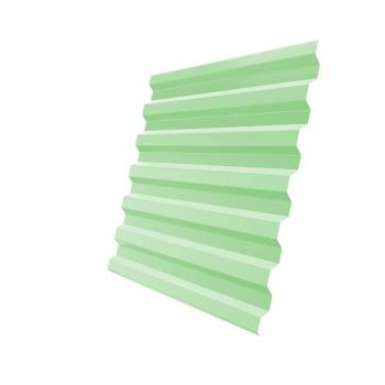 Профнастил С21 6019 бело-зеленый