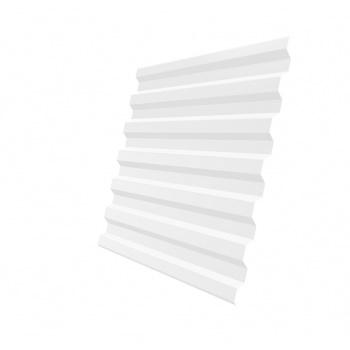 Профнастил С21R RAL 9003 сигнальный белый